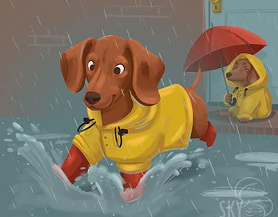 Splish splash, dachsies in the rain
