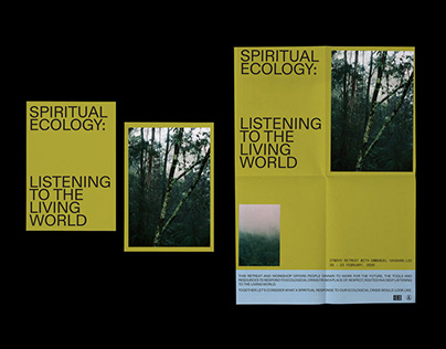 Spiritual Ecology: Listening To The Living World