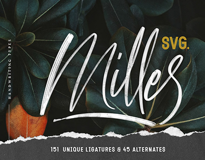 Free Milles Calligraphy Font