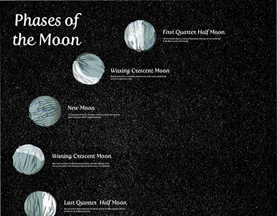 Moon Phase Infographic