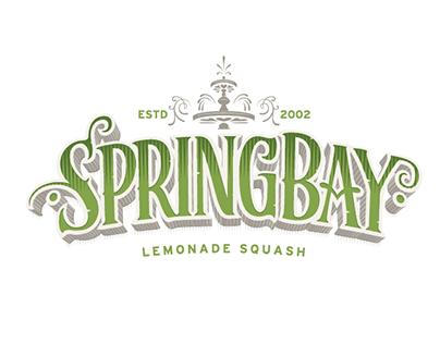 Springbay lemonade squash