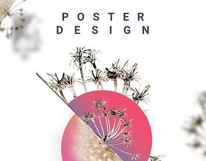 Poster Design for Artists Album