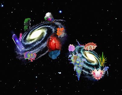 Alien Rocks & Impossible Shells AR Experiences