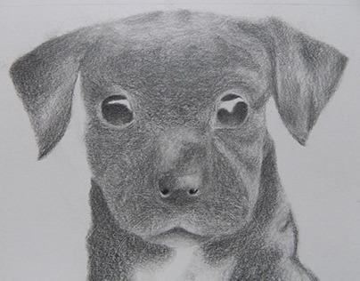 Desenho Artístico | Traditional Media Drawings