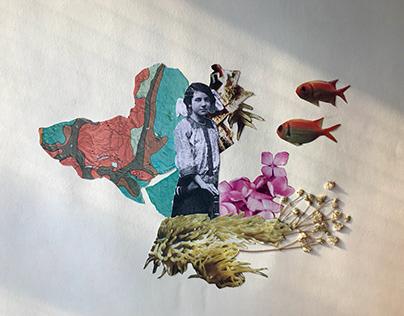 Mujeres en el Collage