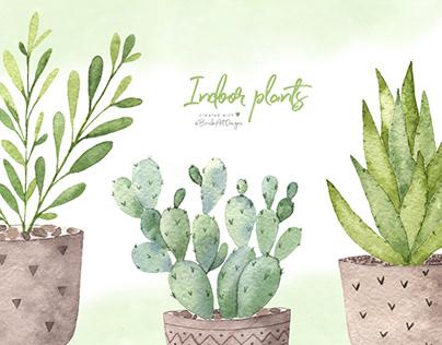 Watercolor indoor plants.