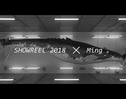 Showreel 2018 of Ming
