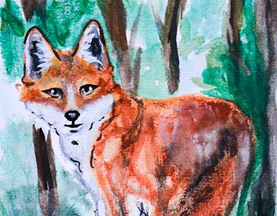 fox squirrel deer
