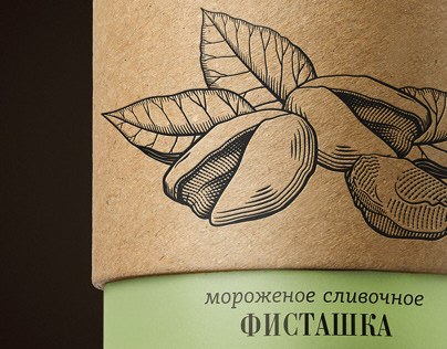 Packaging Design for The Handmade Ice Cream
