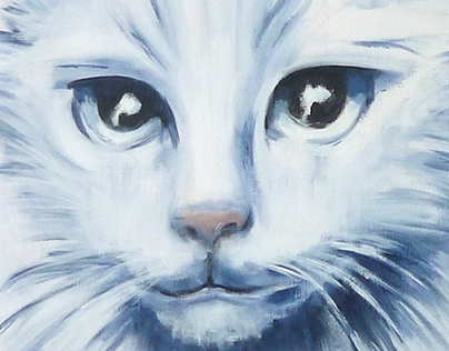 Blue&White Cat