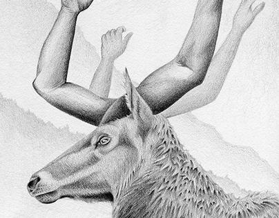 HANDsome Deer Graphite Pencil Drawing
