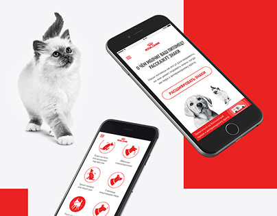 Royal Canin Signs Project