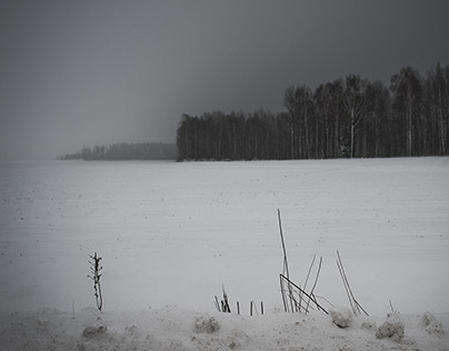 Winter is coming back. March 2016, Poland