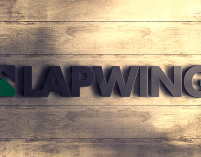 whitegraphic | Brand concept | LAPWING