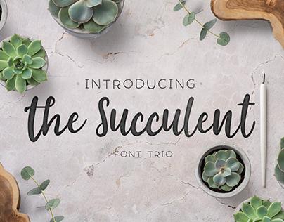 The succulent - font trio!