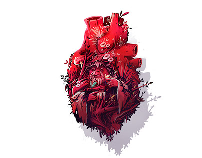 Heart - Incor