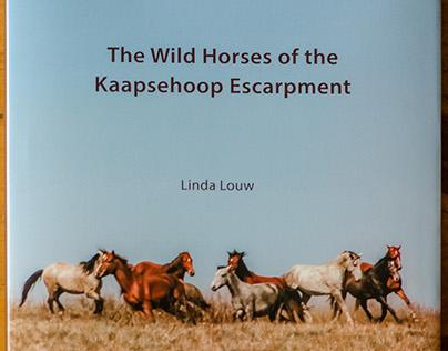 The Wild Horses of the Kaapsehoop Escarpment