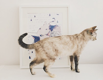 ODE TO THE CAT