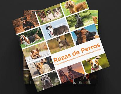RAZAS DE PERROS | Editorial Design