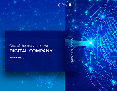 """""""Ornix"""" concept design page for web agency"""