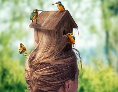 Birdhouse Hairstyle