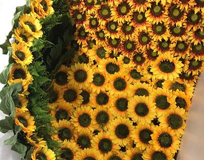 AO Sunflower Art Installation