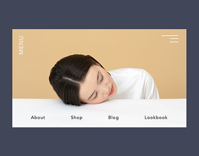 Online Store Menu Hover Animation
