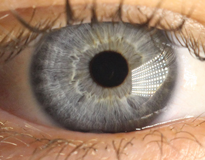 Macro Photography: Eyes