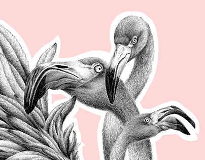 Psychedelic Flamingo