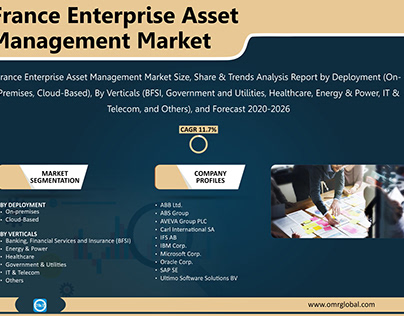 France Enterprise Asset Management Market Growth