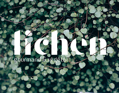 Lichen - Collectif Cosme