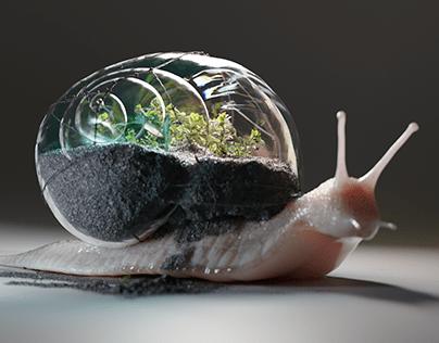 Terrarium Snail