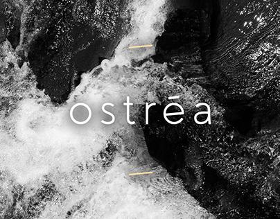 Ostréa - Webmarketing
