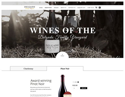 Converting PSD to WordPress for Delgado Family Vineyard