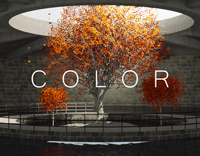 COLOR | short film