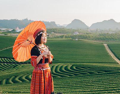 Tour du lịch Mộc Châu 2 ngày 1 đêm từ Hà Nội mới nhất
