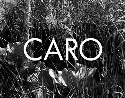 Caro - Garden designer and landscape architect