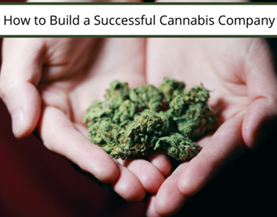 how to build a succesful cannabis company