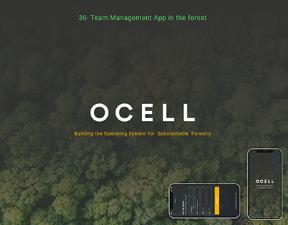 Team Management App in the forest