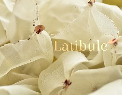Latibule | Surface Design Project