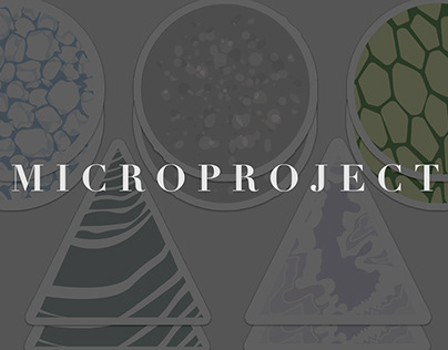 MicroProject