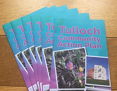 Tulloch Community Action Plan
