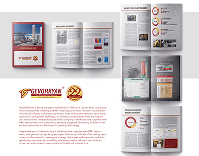 Annual report for GEVORKYAN