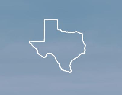 Web Design: Texas Wealth Design