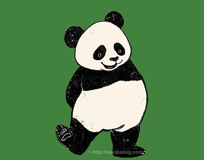 Panda Collection 2019