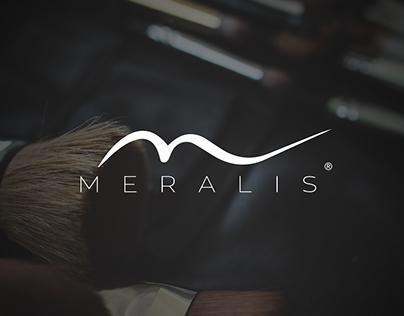 Corporative presentation - MERALIS