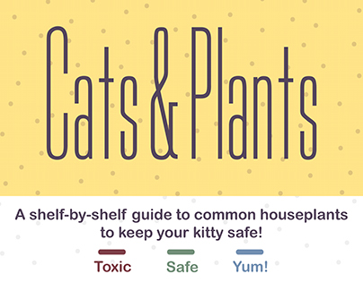 Infographic Cats & Plants