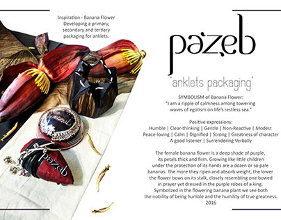 """""""Pazeb"""" Packaging, Logo Design and Prototyping"""