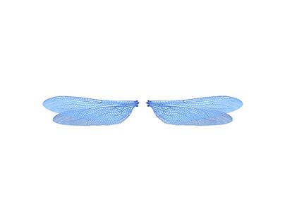 dicomfly