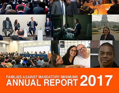 FAMM Annual Report